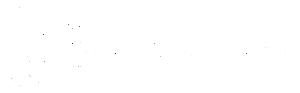 Customer Perceptions White Logo